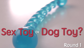 sex toy
